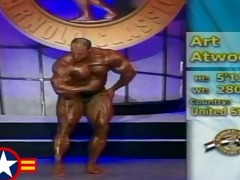 musclebull art atwood: 01065 arnold classic