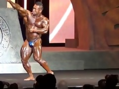 oriental musclebull hide: 45118 arnold classic