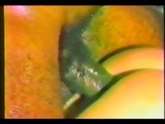 tropical sex in rio