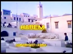classic - harem - part 8